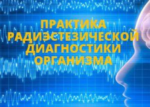 Онлайн курс Наталии Малиной Практика радиэстезической диагностики организма