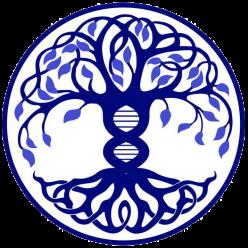 Школа Мастеров Познания Вселенной Наталии Малиной